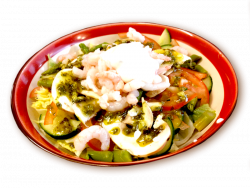 shrimp-salad_1483381999.png