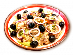 tuna-salad_1483382204.png